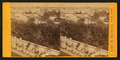(Views of houses, trees), San Jose, California, from Robert N. Dennis collection of stereoscopic views.png
