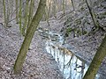 Ördög-árok stream in Remete Valley 02.JPG