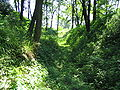 Łętownia13.jpg