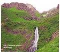Şahbuz rayonu Gurbulaq şəlaləsi.jpg