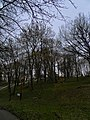 Історична місцевість-парк Аскольдова могила, Київ2.jpg
