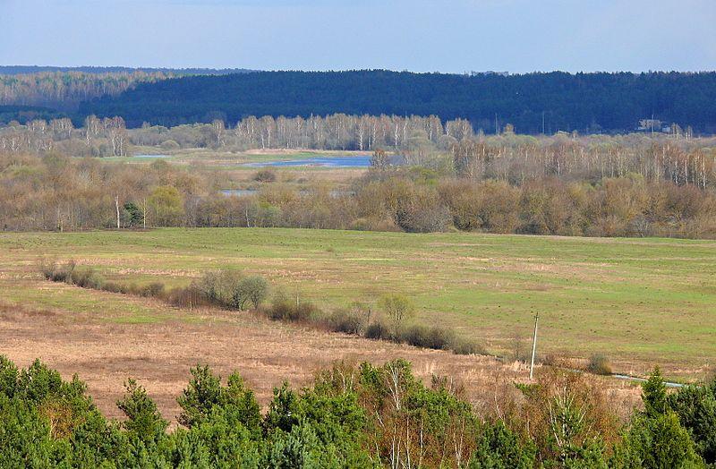 File:Вид с вышки на поля - panoramio.jpg