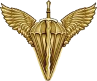 Ukrainian Armed Forces branch insignia - Image: Емб вдв 1 (2016)