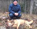 Загонная охота в Беларуси 2015 (волк).png