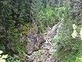 Каньона на река Бъндерица - panoramio - Красимир Косев.jpg