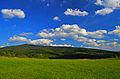 Літній краєвид.JPG