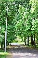 Наводницкий парк в Киеве. Фото 47.jpg