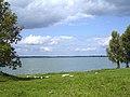 Національний природний парк «Прип'ять-Стохід», літо.jpg