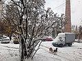 Перший сніг, Крошня.jpg