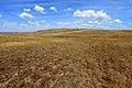Развалы кварцитоконгломератов и кварцитопесчаников на Бандитских горах - panoramio (1).jpg