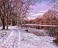 Річка Турунчук.jpg