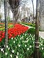 Скверы Душанбе 6.jpg