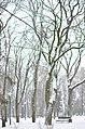 Сквер ім. Т.Г. Шевченка у Хмельницькому. Фото 2.jpg