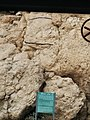 'Ayn Fashkhah, Einot Tzukim, Dead Sea, Palestine 02.jpg