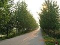 含山县含城西郊柏油公路景色 - panoramio.jpg