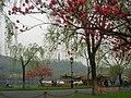 杭州. 西湖. 白堤(一枝桃花一支柳) - panoramio (2).jpg