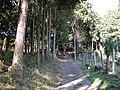 神社に通じる道(その2) - panoramio.jpg