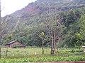西山麓 - panoramio.jpg