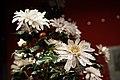 铜镀金镶嵌料石累丝长方盆玉石菊花盆景细节3.jpg
