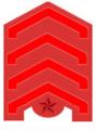 한국 광복군 복무정사 계급장.PNG
