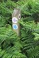 -2020-06-10 Waymarker, Footpath in the parish of Knapton, Norfolk (2).JPG