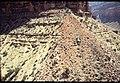 005 Grand Canyon Aerial of Burro Damage 1975 (4952166900).jpg