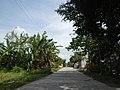 0248jfVentinilla Cabayaoasan Nancamarinan Fields Roads Paniqui Tarlacfvf 02.JPG