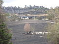 09 vic bushfire damage Yarra Glen 02.JPG