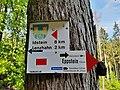 102-Buchwald.jpg