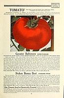 112 superb varieties for market gardeners season of 1926 (Page 31) BHL42917212.jpg