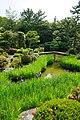 140531 Hokkeji Nara Japan09s3.jpg