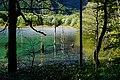 150920 Taisho-ike Kamikochi Japan04n.jpg