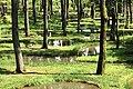 190725 Art Biotop Nasu Tochigi pref Japan01bs20.jpg