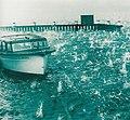 1947 Sydney hailstorm boat.jpg