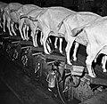 1966 Domaine expérimentale de La Sapinière à Bourges-31-cliche Jean-Joseph Weber.jpg