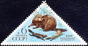 Voronezh Nature Reserve - 1973 Stamp, Soviet Union, highlighting the Voronezh Reserve and the beavers for which it is known.