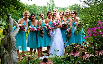 Bridesmaid - Seven bridesmaids in matching dresses, with the bride