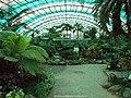 2003年西丽果场 - panoramio (3).jpg