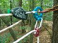 20030830중앙119구조단 산악계곡구조 훈련18.jpg