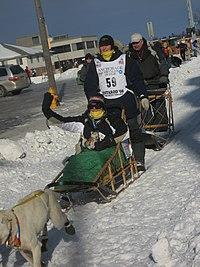 2008 Iditarod Anchorage (2311610995).jpg