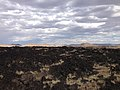 2014-07-18 17 06 41 View across the top of the Black Rock Lava Flow, Nevada.JPG
