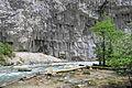"""2014 Reliktowy Park Narodowy Rica, Wąwóz """"Kammienna torba"""" na rzece Jupszara (09).jpg"""
