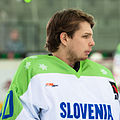 20150207 1426 Ice Hockey ITA SLO 8667.jpg