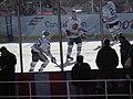 2015 NHL Winter Classic IMG 7923 (16133736178).jpg