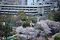 20160403 Himeji-Castle 3353 (26826011645).jpg