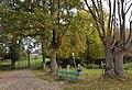 2016 Bissebeek bij Swier 04.jpg