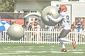 2016 Cleveland Browns Training Camp (28614238191).jpg