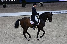 2018FEI-WORLD-CUP-DRESSAGE-Ludovic-Henry1.jpg