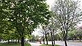 20200508 162708 ul. witosa wincentego białystok.jpg