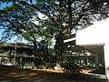 250San Mateo Rizal Landmarks Province 04.jpg